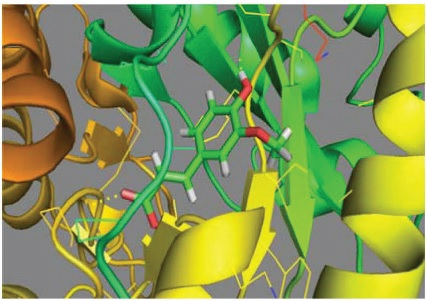 The structural overlay of docked compound receptor (ferulic acid)) and ligand human α- glucosidase